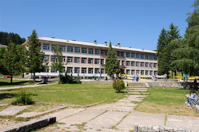 Школа Ристо Пророковић